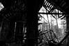 Old shed by Frank Schmidt