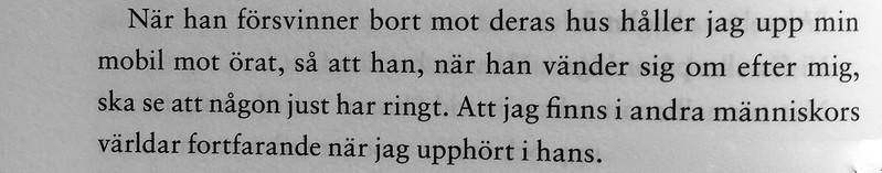 Nattsagor för sömnlösa - Johanna Wester
