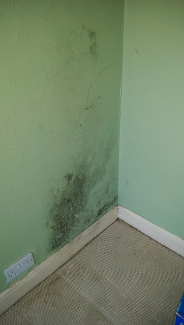 This mould is where a wardrobe was next to the wall. What's going on here and how do I stop it?