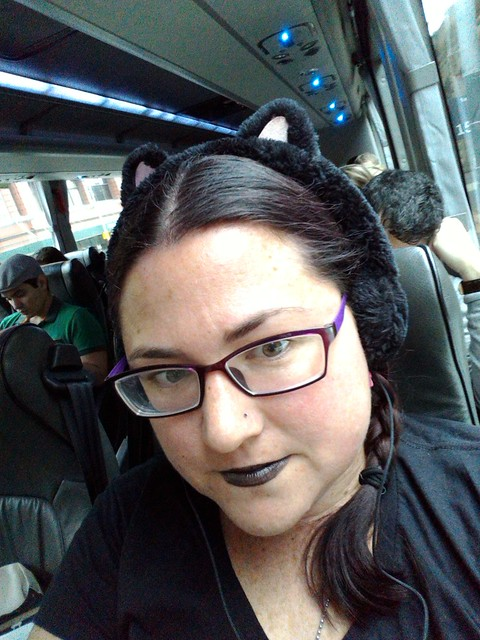 bus cat gothic ears