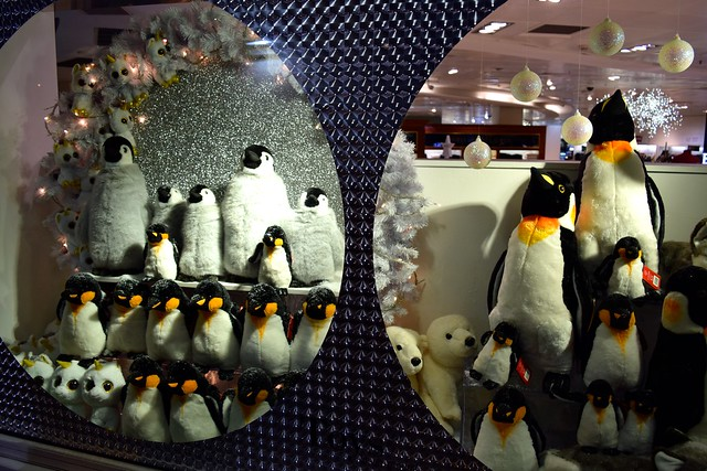 Penguins in Fenwicks Christmas Window, Canterbury | www.rachelphipps.com @rachelphipps