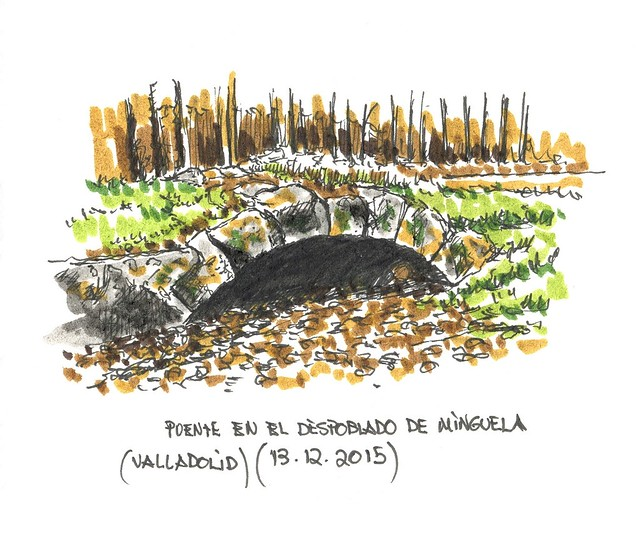 Minguela (Valladolid)
