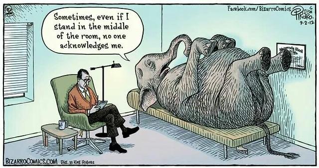 elephant-day