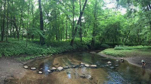 park forest stones belarus zalesie