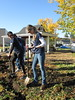 Deloitte_volunteers_garden 2015-10-01 4-49-40 PM