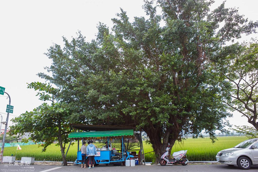 柳營太康社區-太康113 (38)