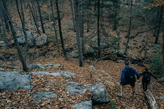 Star studded trail, Seven Lakes Drive, New Jersey, Bicycle Trip!