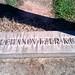 "Cemetery Section for the Shtetl Chechanovtza, Poland <<>> Stone Says ""Chechanovtzer K.U.V."" by Chic Bee"