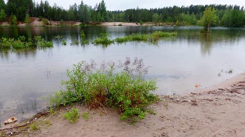 summer reflection finland geotagged pond july fin seinäjoki sandpit 2015 eteläpohjanmaa ylistaro 201507 kokkokangas 20150709 geo:lat=6308036477 geo:lon=2259175302