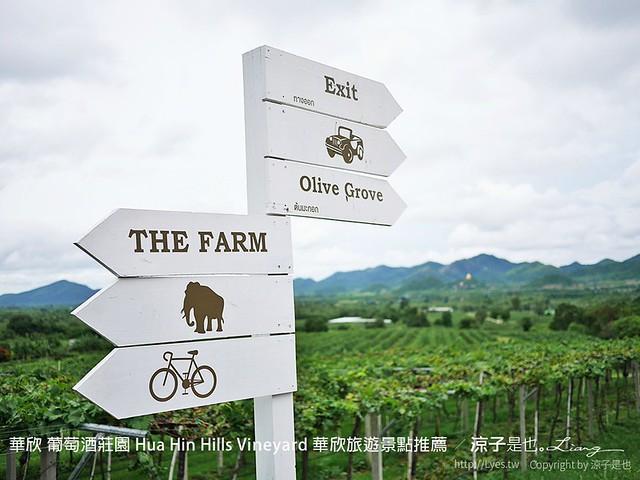 華欣 葡萄酒莊園 Hua Hin Hills Vineyard 華欣旅遊景點推薦 2