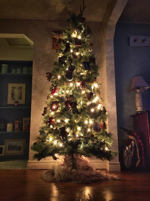 Our First Kawartha Christmas