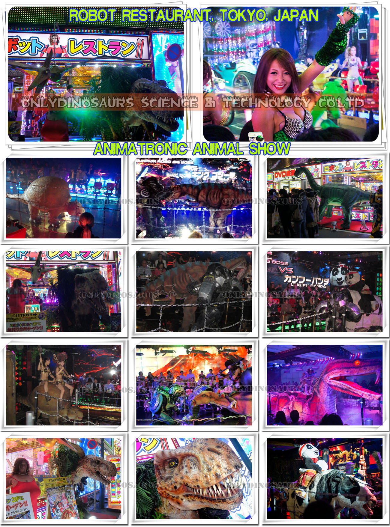 Animatronics Show for Robot Restaurant