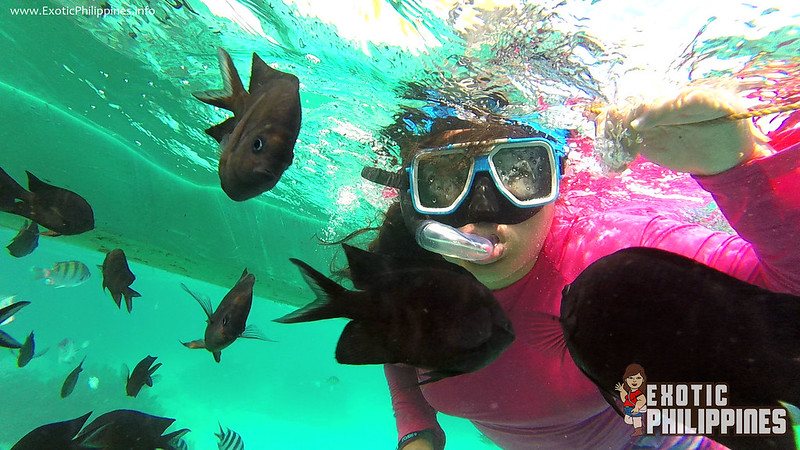Malcapuya Island Coron Palawan Philippines (53)