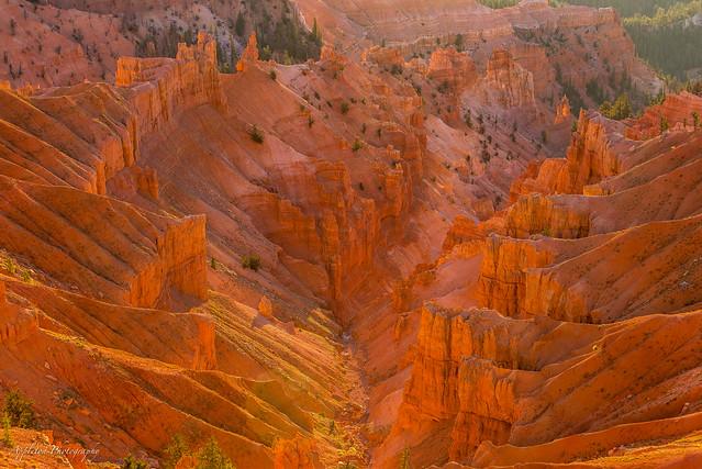 Canyon afire