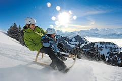 Rigi a Pilatus– nelyžařské aktivity jako zimní pěší turistika, sněžnice nebosáňky