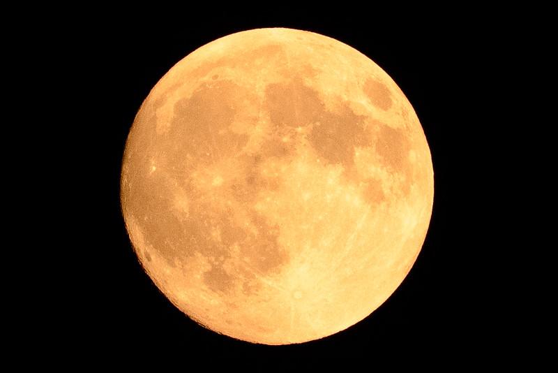 Super Harvest Moon