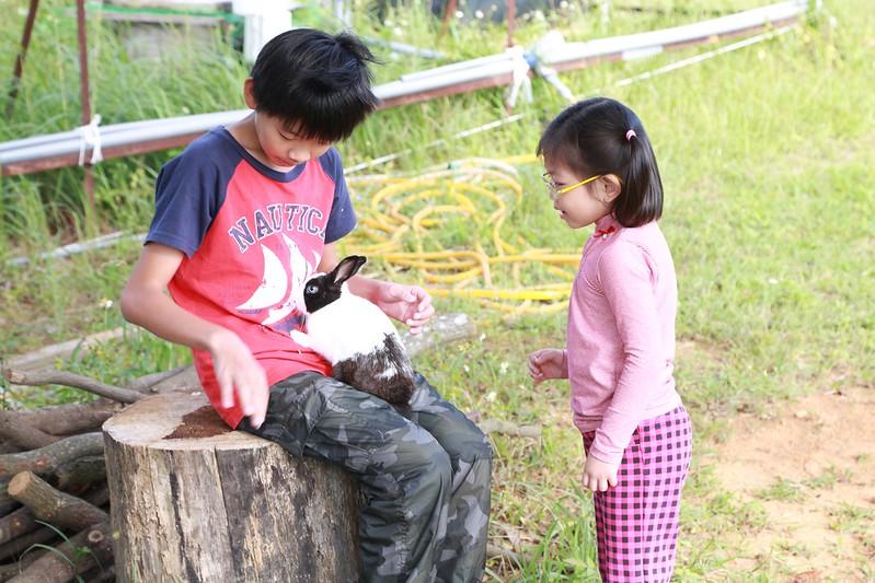 營主兒子和小兔子