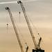 Cranes by blech