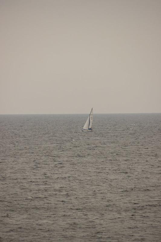 Open sea (214 av 365 - Hissa)