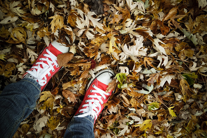 don't walk around the leaves, even if your shoes are pretty and newish.