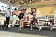 Joya Kickboxing Championship Finals 2015