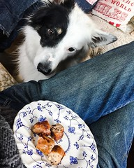 He's spoiled rotten, we always cook an extra sausage for him 😋#caravanlife #dogsofinstagram #dog #bordercollielovers #bordercollies #bordercollie #bordercolliesofinstagram #bordercollieworld #itsmypet @lorrainestewart62