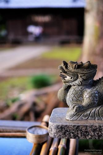 氷川神社20161012-DSCF1351 (2)-t