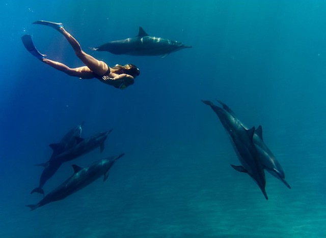 🐬🐬🐬❗️ Photo taken with the #DxoOne + Outdoor Shell.  I'll be sharing about my experience using this camera at @dxoone booth # 545 at #PPE2016 today at 11:30am & 3:00pm and tomorrow (Friday) at 1:00pm and 4:00pm. If you'