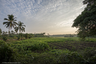 """""""God's Own Country"""""""