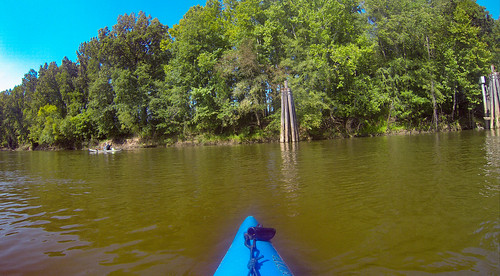 Savannah River Paddling-165