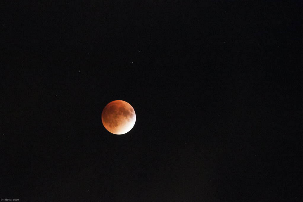 Super Blood Moon Lunar Eclipse - Mid-Autumn Festival - New York City 2015