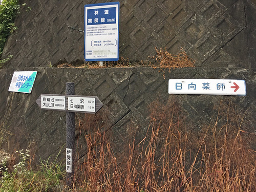 Yakushi Forest Road(Isehara, Japan)