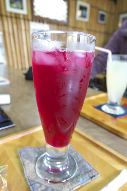 2015紅葉 紅桜公園_11