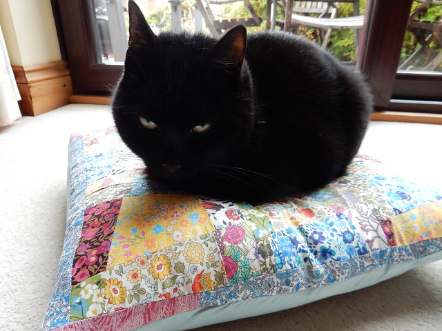 testing out the new cushion (4)