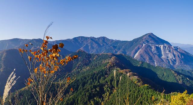 これから歩く稜線と背後の武甲・小持・大持山