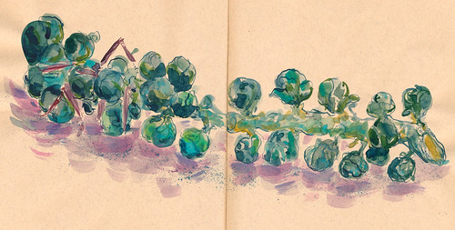 Sketchbook #93: Brussels Sprout