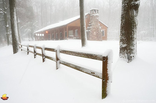 park wood trees winter white ny newyork nature forest fence season landscape outdoors photography wooden buffalo cabin woods wind first snowfall commissioner orchardpark 2016 chestnutridge etbtsy