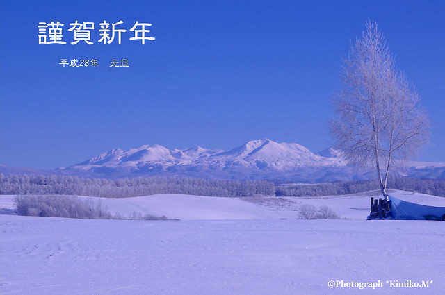 謹賀新年・大雪山