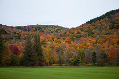 Fall colors off State Highway 100, Vermont