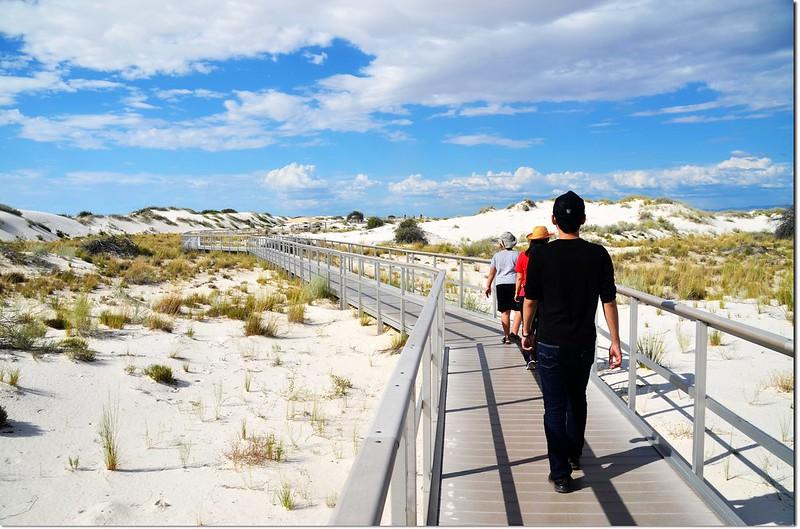 Interdune Boardwalk 2