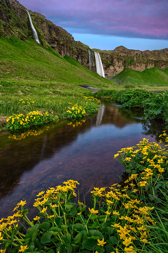 travel flowers sunset reflection colors photoshop sunrise landscape waterfall iceland google sony workshop nik fe seljalandsfoss 1635 a7ii southiceland colorefex a7r emount luminositymasking colbybrown