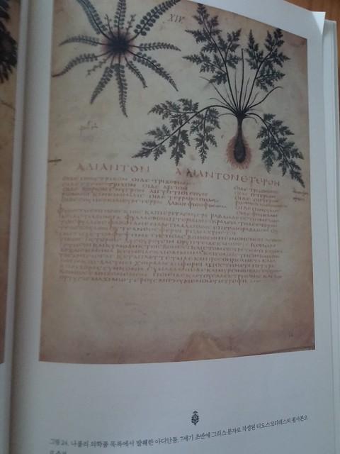 독서노트-2천년 식물 탐구의 역사 The Naming of Names