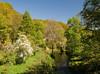 Dunsford summer scene, Devon 11 by chris-parker