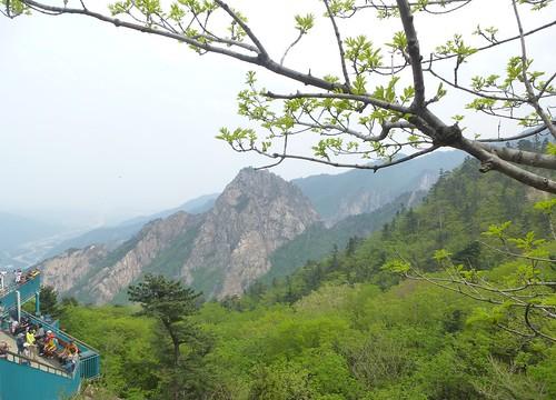 Co-Sokcho-Seoraksan-Montagne (3)