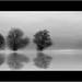 Glass lake by Jem Salmon