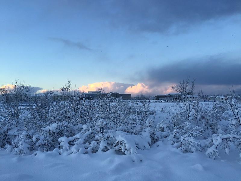 3/12 Sneeuw