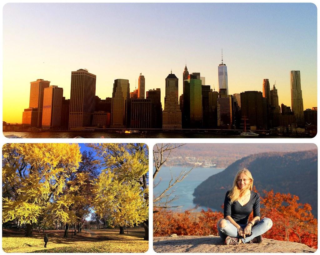 New York November 2015