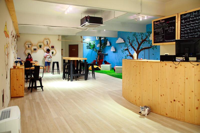 TTDI Cat Cafe