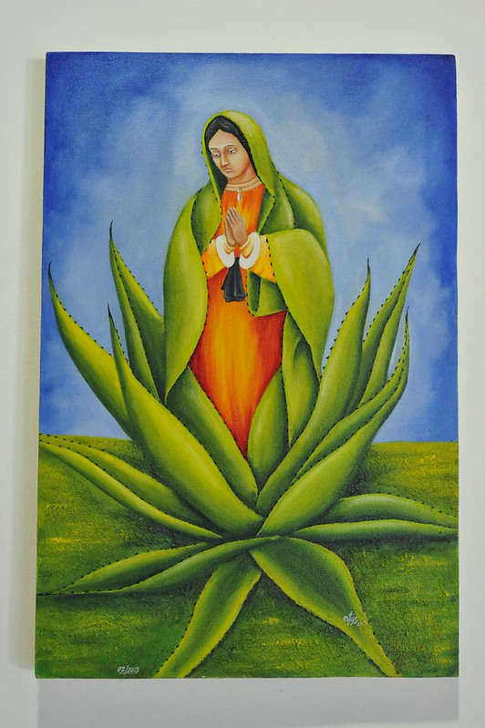 Maguey with Virgen de Guadalupe