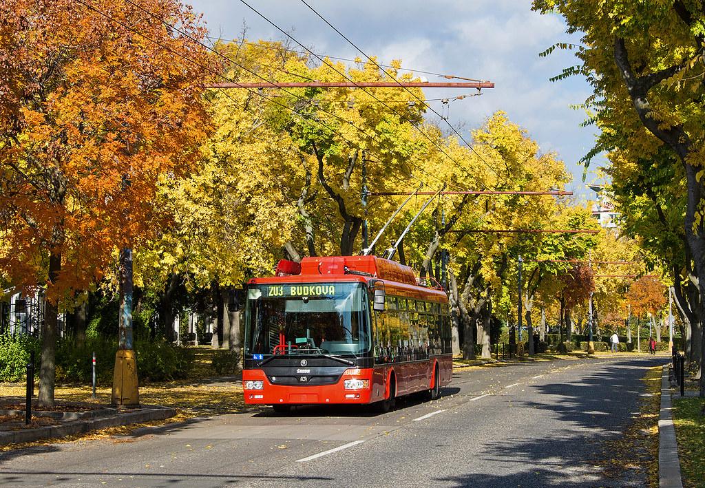 Lemon forest | Škoda 30 Tr SOR | 6012 | Námestie slobody